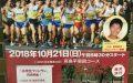 10/21(日)8:30-「第43回板橋区・高島平ロードレース大会」@高島平エリア